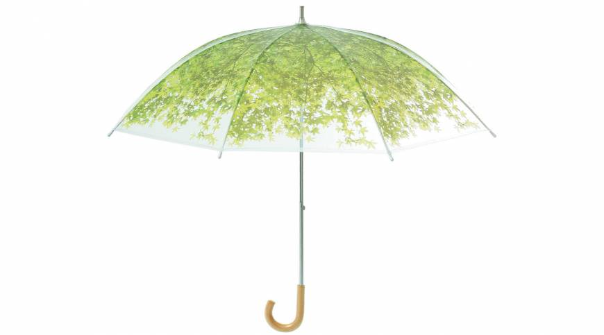 Wood, paper, leather and a brolly that branches out into a leafy bough