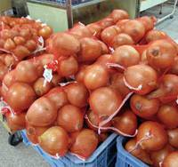 Cool for cats: Onions piled high in a shop at Iwaya's port; the entrance to a bathhouse on Iwaya's shotengai (old-style shopping street); many buildings are in a state of disrepair in Iwaya's shitamachi (old town) area; portraits of cats at Nakahama Minoru's Cat Art Museum.   SIMON BARTZ PHOTOS