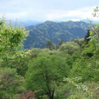 Natural glory: Saitama's Oku-Chichibu region from Mount Hodo | MANDY BARTOK