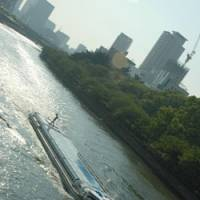 All aboard: A river bus takes tourists and commuters through the center of the city.