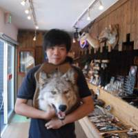 Say cheese: Nature souvenirs such as this mounted wolf's head abound at various Ainu shops in Otaru.