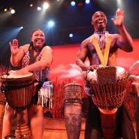 Beat it: African drummers in the production 'Drumstruck' will invite audience members to join them in making some traditional music from the continent.