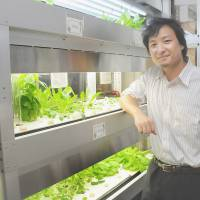 Growing strong: Yukihiro Maru, president and CEO at Leave a Nest Co., poses by an inhouse vegetable factory in Tokyo on July 30. Right: Makaru Fujimoto, an 'agripreneur' who represents Innoplex Inc., is interviewed in Tokyo on Aug. 5.   SATOKO KAWASAKI
