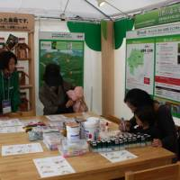 Forest for the trees: Visitors to the Asahi Breweries Group booth set up at the COP10 site in Nagoya take in a workshop utilizing trees cut down for thinning at the group-owned forest in Hiroshima Prefecture on Tuesday. The preservation of a healthy forest is important for securing clean water and air, the group said. | SETSUKO KAMIYA