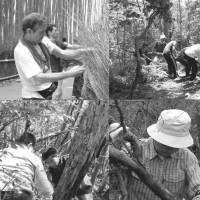 Tender care: Local volunteers from People Together for Mount Ogura meet regularly to spruce up the mountain, parts of which have long been used as an illegal dumping ground. | COURTESY OF PEOPLE TOGETHER FOR MOUNT OGURA