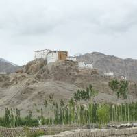 Thiksey monastery today looks much as it did when the writer painted it during her trip to Ladakh in 1981.   LESLEY DOWNER