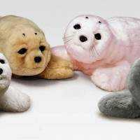Cute and cuddly: New variations of Paro, the therapeutic baby seal robot, are shown in a photo by their developer, the National Institute of Advanced Industrial Science and Technology. | KYODO