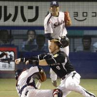 Deep impact: Hanshin's Matt Murton (right) collides with Tokyo Yakult catcher Ryoji Aikawa in the seventh inning of the Swallows' 2-0 win on Saturday. | KYODO