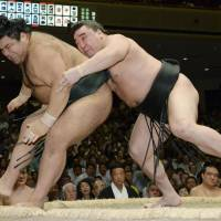 Sitting target: Harumafuji (right) shoves Takayasu out of the ring at the Autumn Grand Sumo Tournament in Tokyo on Thursday. | KYODO