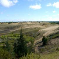 Bushwhacked: This Sept. 1 photo shows dunes at Spirit Sands in Manitoba's Spruce Woods provincial park. | AFP-JIJI