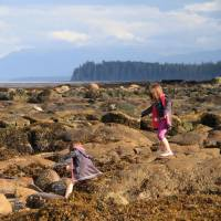 The twins playing on tidal rocks near Port Hardy, Vancouver Island. | C.W. NICOL PHOTO
