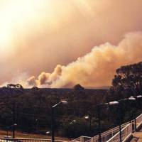 Out of control: Smoke rises from a wildfire near Springwood, west of Sydney, on Thursday. Nearly a hundred fires are burning across the Australian state of New South Wales, with more than a dozen out of control, as unseasonably hot temperatures and strong winds fan flames across the parched landscape | AP