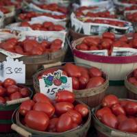 Better red than dead: According to the American Cancer Society tomatoes contain lycopene, an antioxidant that can block the action of cell-damaging free radicals. | BLOOMBERG