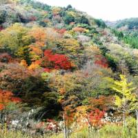 Seasonal hues: The mountains of Gokanosho in southern Kumamoto Prefecture are awash with color in the autumn. | PHOTO MANDY BARTOK
