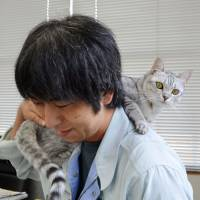 Feline assistant: Mei the cat sits on the shoulder of a staff member at Chuo Small Animal Management Center in the city of Kochi on Sept. 4. Mei's life was spared after she was brought in to the center to be disposed of. | KYODO
