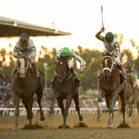 Mucho Macho Man wins by a nose