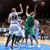 Who wants it?: Toyota's Philip Ricci (right) and Toshiba's Nick Fazekas compete for the ball during their game at Yoyogi National Gymnasium No. 2 on Saturday. The Brave Thunders beat the Alvark 73-65. | KAZ NAGATSUKA