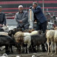 Violence begets violence: Uighur men gather at a bazaar to sell their sheep in Hotan, in China's far west Xinjiang region, on Thursday. Muslim Uighurs in Hotan, the hometown of alleged attackers who drove a car into a crowd in Beijing's Tiananmen Square, say violence is driven not by global jihadism but a litany of police brutality, official discrimination and cultural repression | AFP-JIJI
