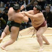 Promotion push: Ozeki Kisenosato (right) beat both yokozuna at the recently concluded Kyushu Grand Sumo Tournament and will be given the chance to join their ranks at the next basho in January. | KYODO