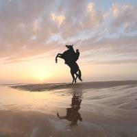 Ride and set: A Palestinian rides a horse on the beach as the sun sets on Friday. | AP