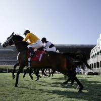 And they're off: Horses break from the gate on the final day of racing at Betfair Hollywood Park on Sunday in Inglewood, California. The track closed its doors after 75 years of thoroughbred racing. | AP