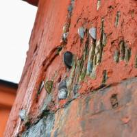 A photo taken on Dec. 18 shows coins in the cracks of the gate's main pillar. | KYODO