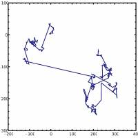 Looking with Levy: A plot of 1,000 steps in a Levy flight. When ocean predators can't find food, they abandon random Brownian movements for Levy flight, a mix of long trajectories and short, random movements.   PAR/WIKIPEDIA