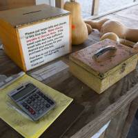 Salt of the earth: Dennis and Darlene Hess' produce stand uses an unattended cash box operating on the honor system. | AP
