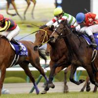 Red Reveur triumphs at Hanshin Juvenile Fillies in photo finish