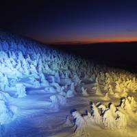 Snow attack: Yamagata's 'ice monsters'