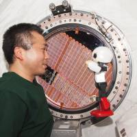 Cooperation vs. competition in space