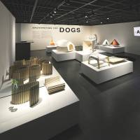 Dog day afternoon: Kenya Hara's 'Architecture for Dogs,' a project that explores the new possibilities of an architecture perceived at the scale of dogs, has been exhibited in the U.S. and Japan. Hara plans to continue displaying the exhibition in Asia over the next few years. | NACASA &; PARTNERS INC.