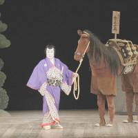 This special Horse Year kabuki's a real winner