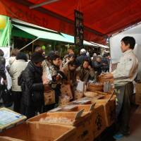 Winter is the tastiest time to visit Tsukiji fish market