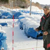 Victim of circumstance: Nobuyoshi Ito, who describes himself as an 'apprentice farmer,' holds a dosimeter in front of snow-covered bags containing contaminated dirt and sand in the village of Iitate, Fukushima Prefecture, on Dec. 15. | KYODO