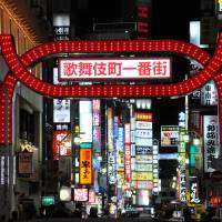 For night owls: With its warrens of bars, restaurants and adult entertainment clubs, the Kabukicho area to the east of Shinjuku Station stays active all night. | SATOKO KAWASAKI