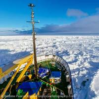 Sea of white: The view from the bow of the Shokalskiy is seen Dec. 27. | AFP-JIJI