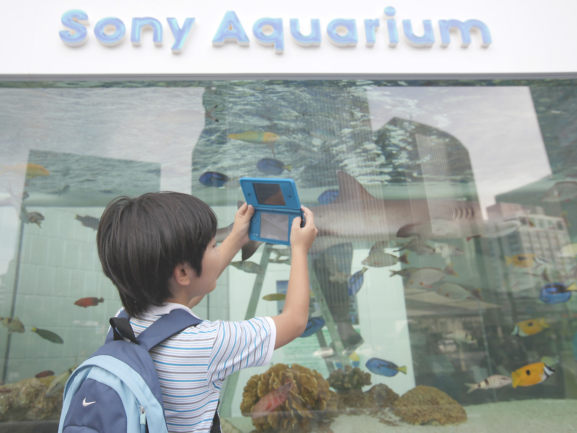 Dual-use toy: A boy uses a Nintendo Co. 3DS game console to take a photo of colorful fish swimming in an aquarium situated outside the Sony Corp. showroom in the Ginza district of Tokyo in August 2012. | BLOOMBERG