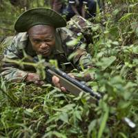 Poachers, beware: A ranger of the Kenya Wildlife Service and Kenya Forest Service takes cover while engaging in a mock ambush as rangers stage a demonstration of the skills they learned in training with British troops in a forest near Nanyuki, Kenya. | AP