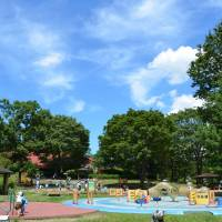 Exploring a land designed with children in mind