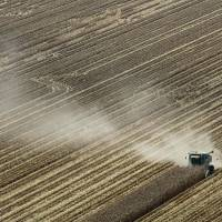 Dust in the wind: A combine harvests corn in August 2012 in Coy, Arkansas, where a brutal combination of widespread drought and a mostly absent winter pushed the average annual U.S. temperature to record levels in 2012. | AP