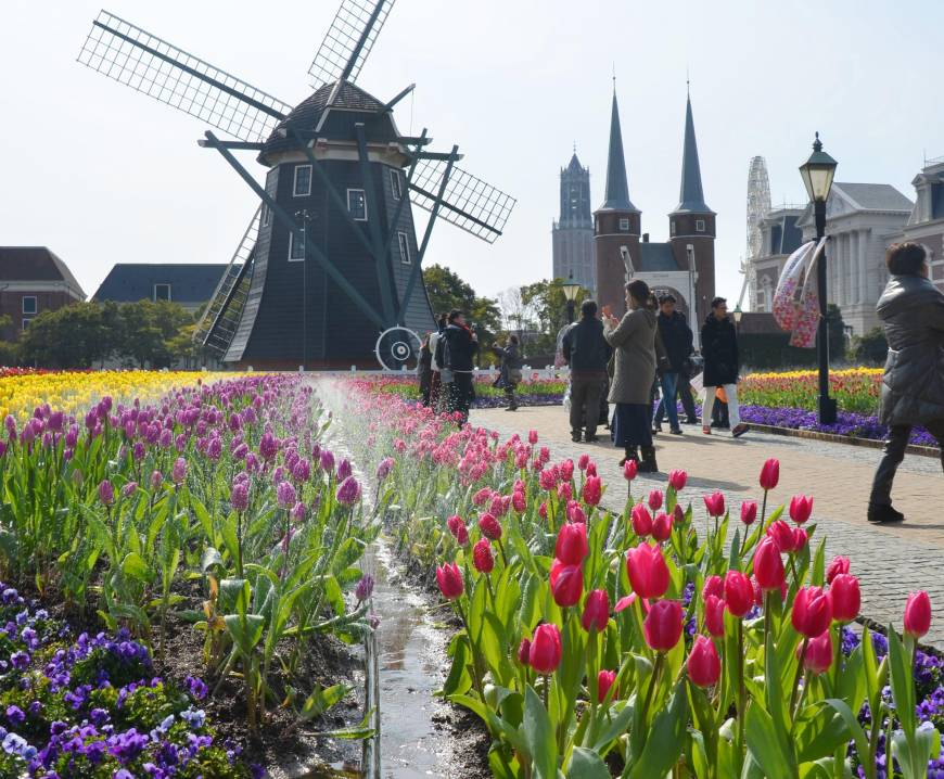 Crowds flock to flower festival at Huis Ten Bosch