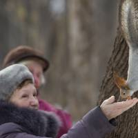 Rare treat: Women feed a squirrel in Moscow's Neskuchny Sad park on Feb. 3. | AP