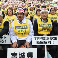 Unified front: Protesters in Tokyo take part in an October 2011 rally against Japan's participation in the Trans-Pacific Partnership trade negotiations. | BLOOMBERG