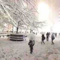 The front of Shibuya Station all covered in snow on the evening of Valentine's Day.   ANDREW LEE