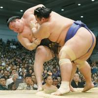 Show of force: Ozeki Kotoshogiku pushes out yokozuna Hakuho (7-6)  on Friday, the 13th day of the Spring Grand Sumo Tournament. Hakuho and promotion-chasing ozeki Kakuryu are tied for the lead at 12-1. The two will face off on Saturday. 