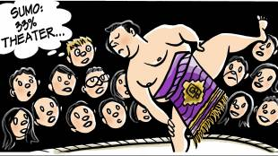 Sumo Pillows