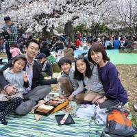 Our guide to family <em>hanami</em> hot spots