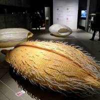 The 'My name is Rice' installation — giant models of rice in different stages greet visitors to 'Kome:The Art of Rice.' | ROBBIE SWINNERTON