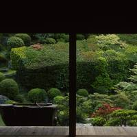 Frieze frames: Part of the main garden at Chishaku-in in Kyoto, as beheld from the shoin (main viewing room), a place designed to foster great thoughts — or none. | STEPHEN MANSFIELD PHOTO